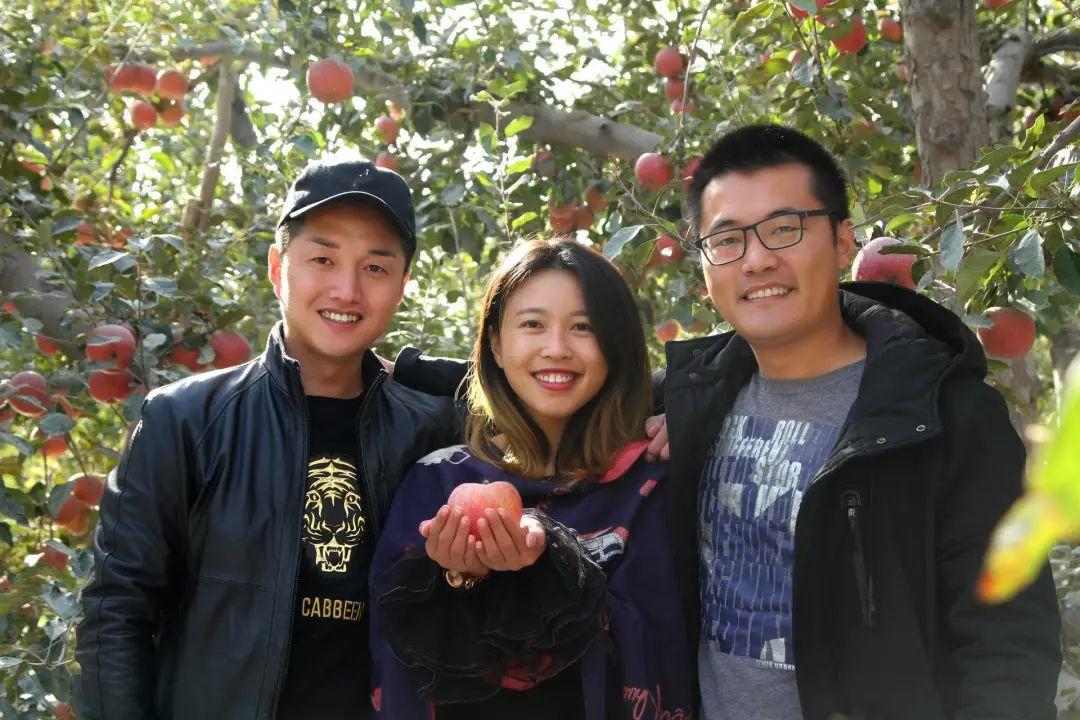 2016年前,为什么我们吃不到新鲜的新疆小白杏?